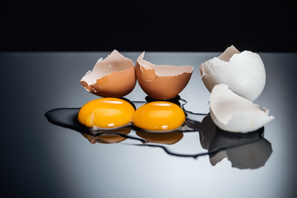 Dangers to Dogs Eating Eggshells