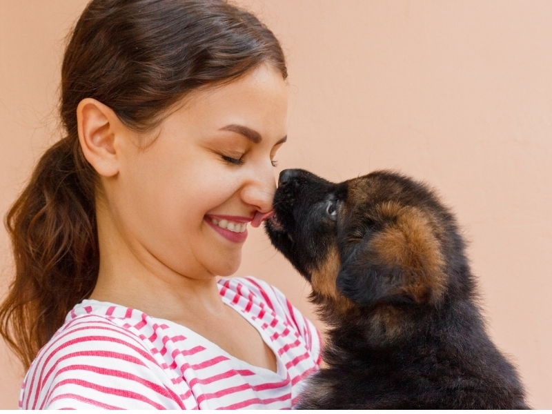 are dogs empathetic