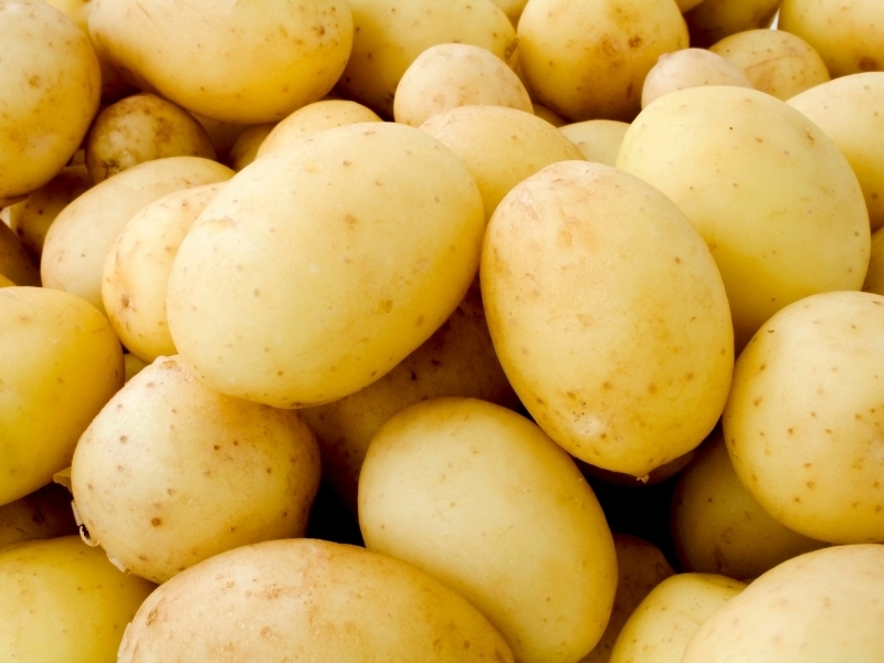 Benefits of Potatoes for Dogs
