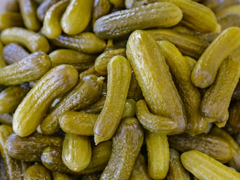 Benefits of Pickles for Dogs