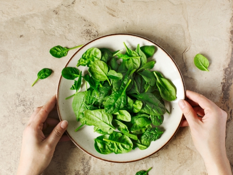 Benefits of Spinach for Dogs