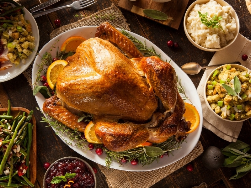 Benefits of Turkey for Dogs