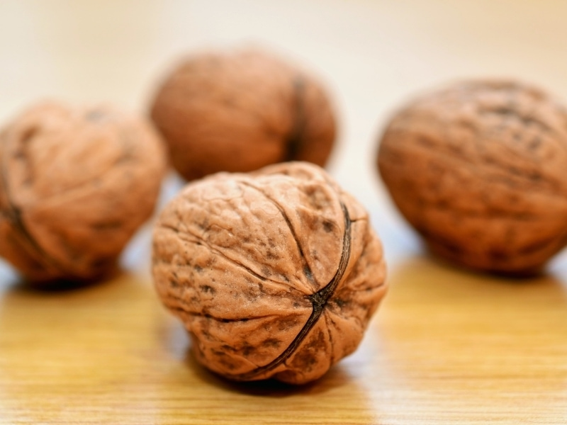 Benefits of Walnuts for Dogs